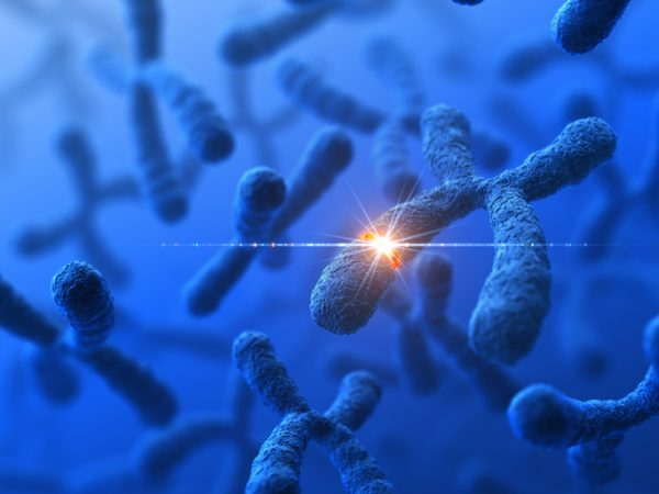 Helix and PerkinElmer launch GenePrism genetic risk product