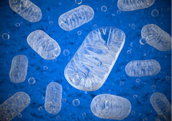 FDA refusal of Stealth Bio drug shows challenges of ultra-rare disease studies