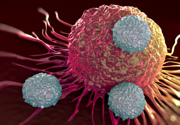 T-cells attacking cancer cell illustration of microscopic photosT-cells attacking cancer cell illustration of microscopic photos