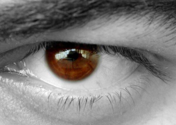 eye, vision