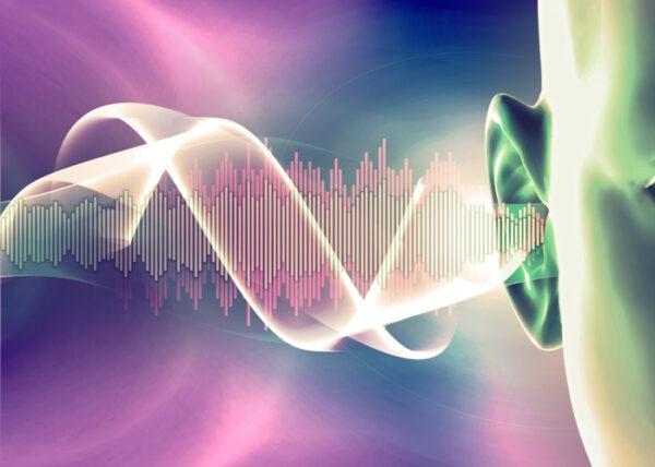 hearing aid hearing loss