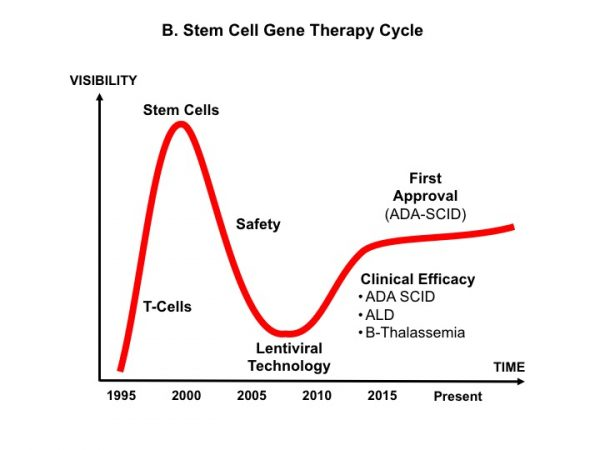 Standing on the shoulders of stem cell gene therapists