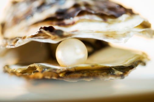 pearl, oyster, oyster shell, pearls