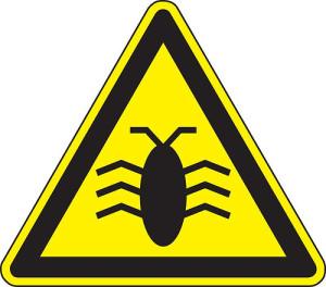 software bug buggy