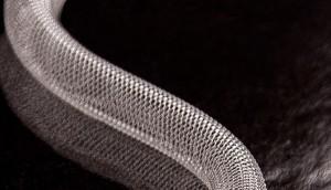 480 Bio stent