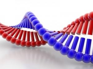 regenerative medicine,