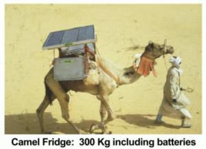 CamelFridge