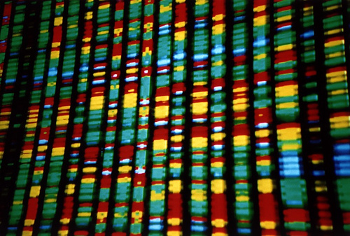 Shares rise for Sequenom on news it will explore genetic analysis segment options