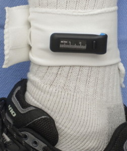 Fitbit One ankle