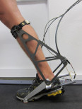 NIH grant robotic ankle brace