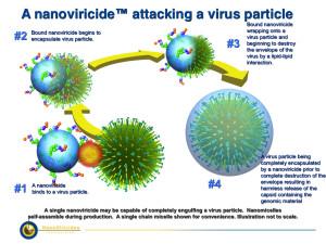 Nanoviricide attacking virus.012