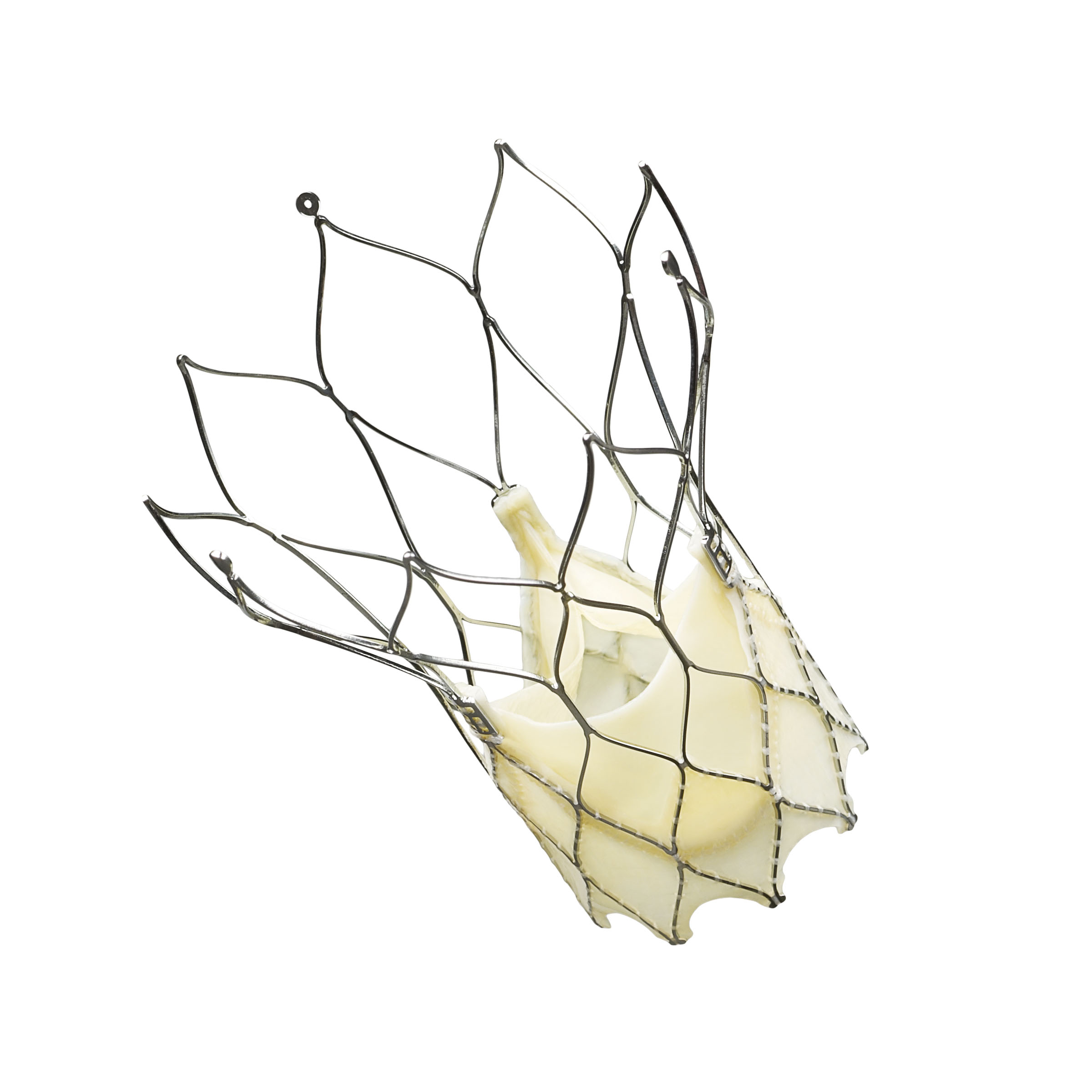 St. Jude Medical's Portico TAVI heart valve wins CE Mark