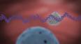RNA Moderna
