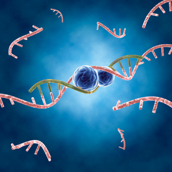 Arcturus emerging as a strong player in RNA therapeutics space