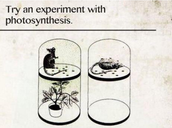 Ha! Why we've got to cool it with the unnecessary medical research