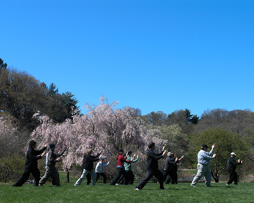 Men who practiced tai chi were less likely to die than men who didn't exercise at all