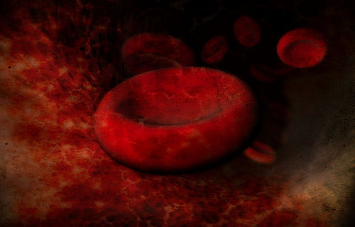 blood, blood vessel, red blood cell