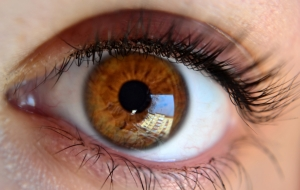 Ditch the reading glasses? Startup focuses on biomimetic lenses that correct presbyopia