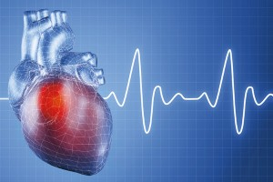 heart_and_heartbeat_0