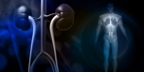 Kidney disease patients see benefits from Amgen parathyroid medicine in late-stage trial