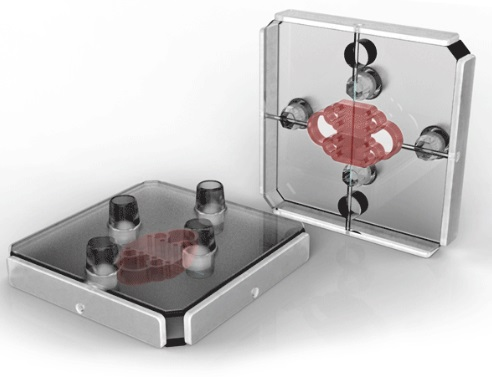 Organ-on-a-chip maker Nortis gearing up for 2015 product launch